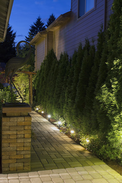 landscape lighting sarasota